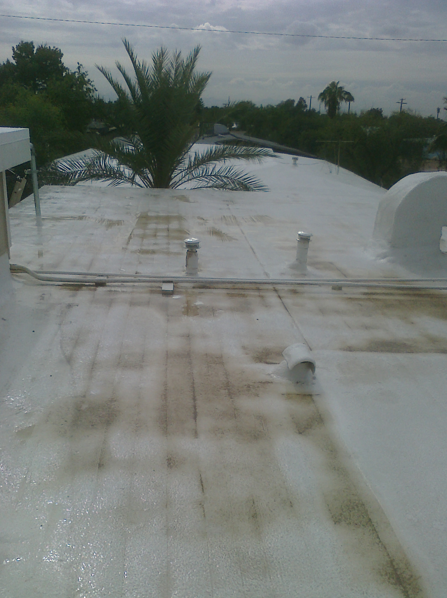 Roof Cleaning in Phoenix